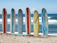 six surfboards standing on beach in front of ocean